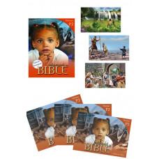 Manuels de Bible Niveau P2 - Pack Classe